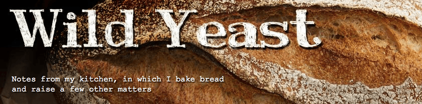 bread recipe blogs
